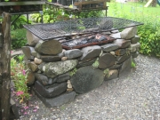 barbeque pit finished and planted with semps