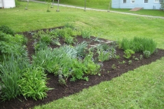 client, Barton Village Garden bed after weeding & mulch.