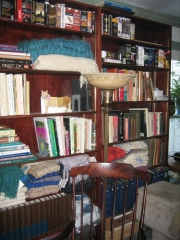 portion of bookcases in Library