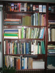 portion of bookcases in Library2