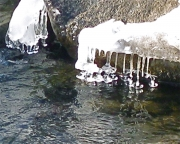 melting snow makes ice bells in the river