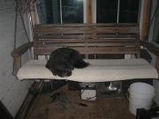 Gypsy:porch swing