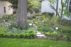 shade garden in early Spring
