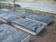beds covered for the winter with shadecloth, raised beds for winter