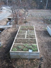 one of two 14' beds, raised beds for winter
